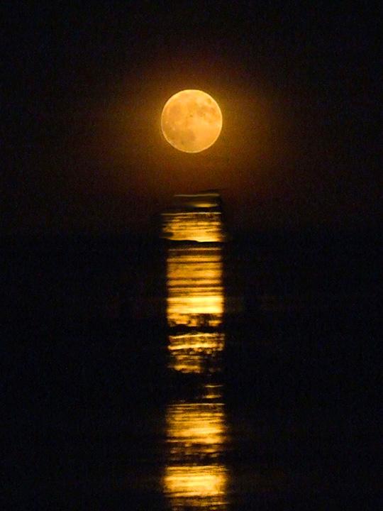 ブルーム観光 月への階段(staircase to the moon)