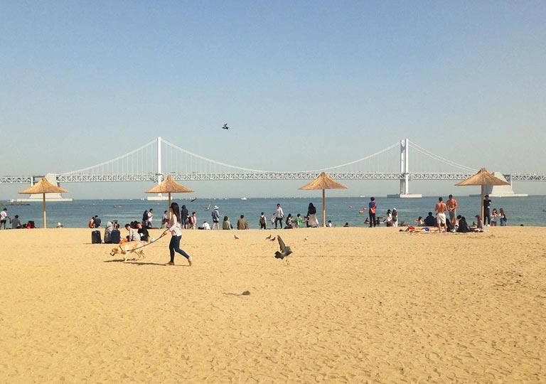 釜山観光 広安里ビーチ(Gwangalli Beach)
