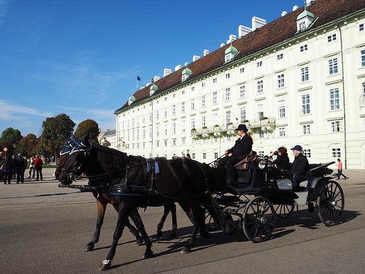 ウィーン観光 モデルコースの画像