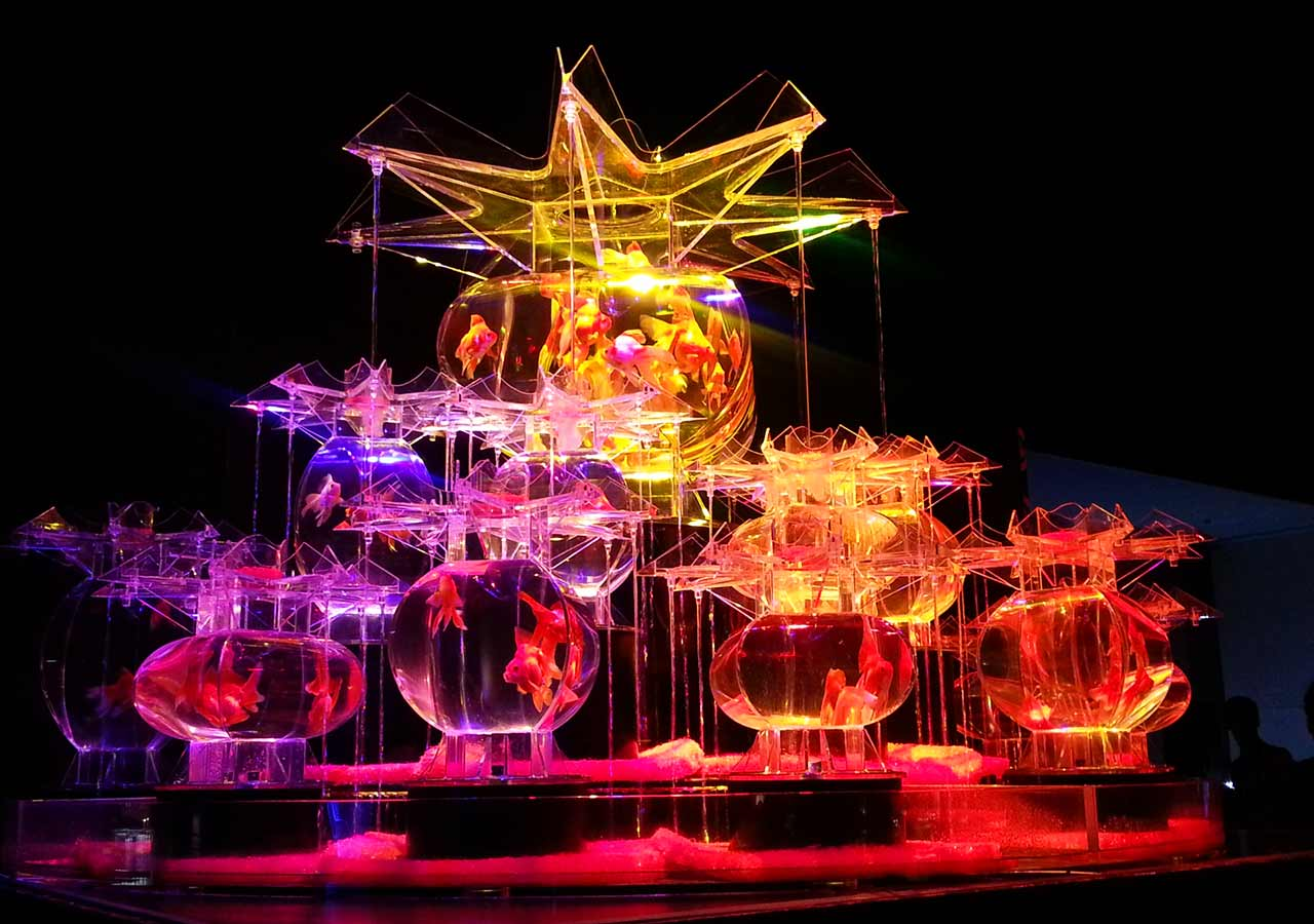 2018ゴールデンウィーク 福岡のおすすめイベント アートアクアリウム