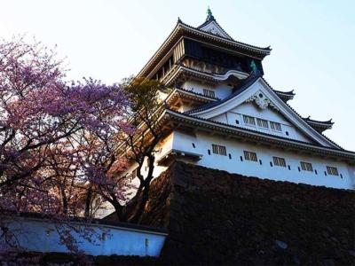 「福岡一の桜の名所、小倉城!風情たっぷりのお花見を楽しもう」 トップ画像