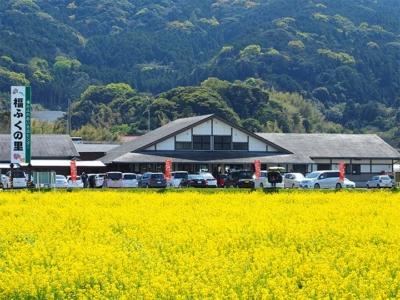 「糸島産直市場の福ふくの里がめっちゃ良かった!糸島の穴場」 トップ画像
