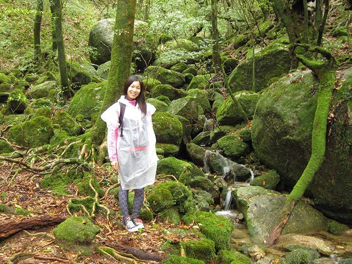 「屋久島の観光おすすめコース!世界遺産の島をぐるっと一周」 トップ画像