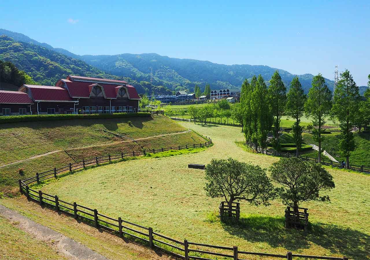 福岡観光 もーもーらんど油山牧場 場内