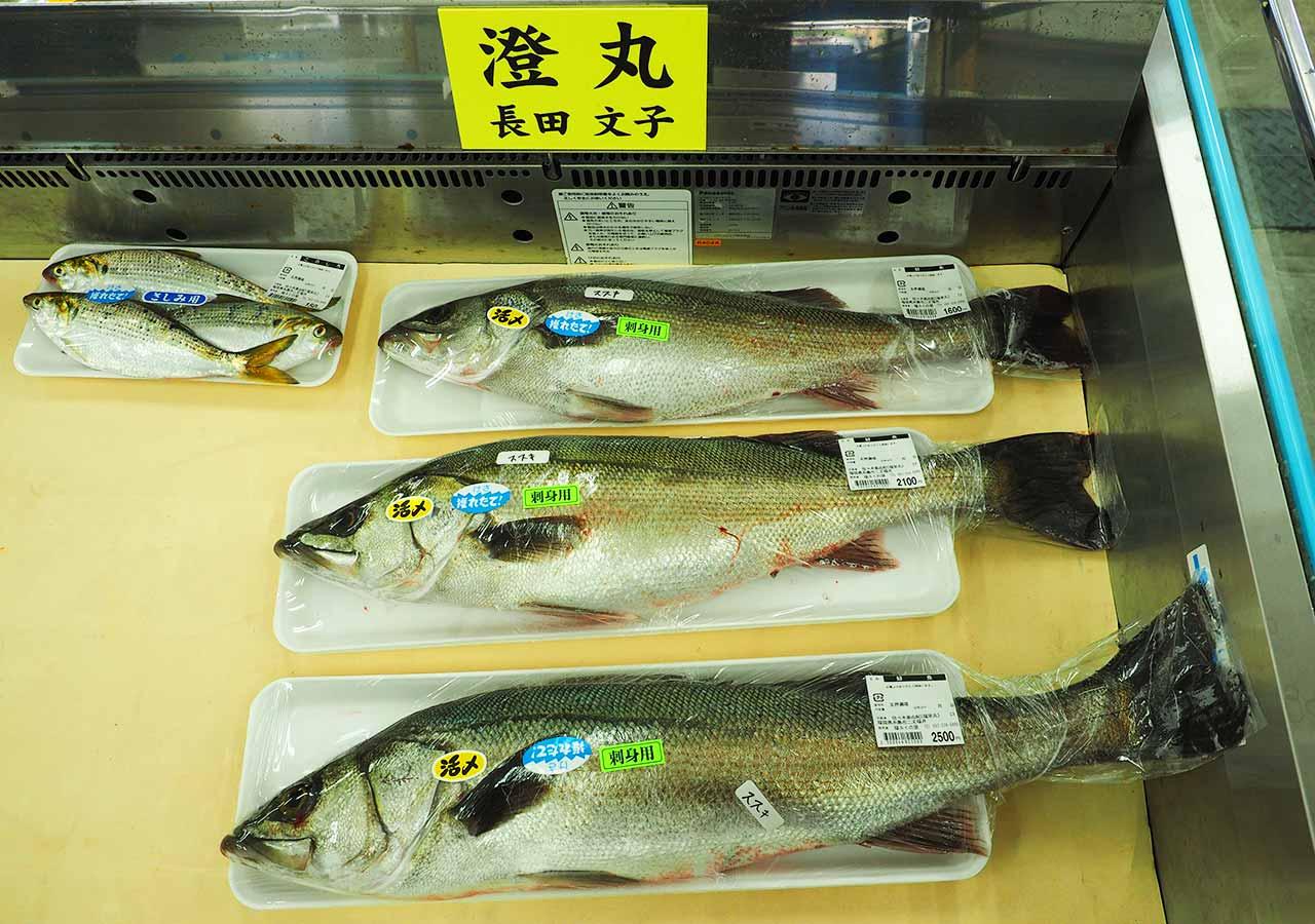 産直市場「福ふくの里」 鮮魚売り場のススキ