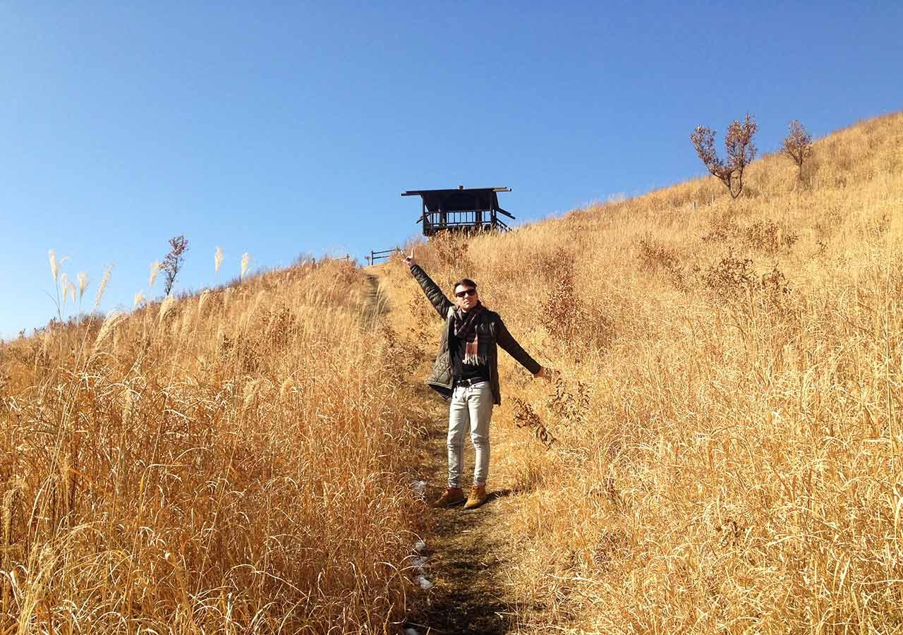 熊本県 黒川温泉周辺のおすすめスポット 平野台高原展望所/恋人たちの丘(Love Hill)