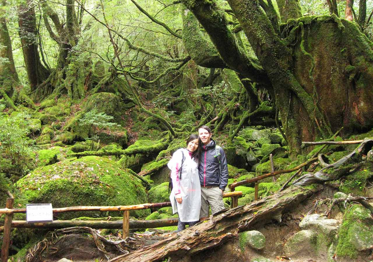 鹿児島 屋久島一周の観光コース 白谷雲水峡