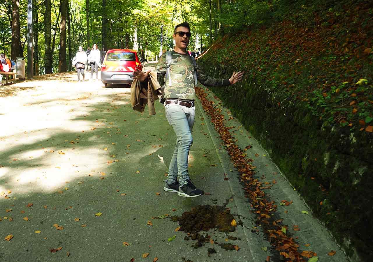 ドイツ観光 ノイシュバンシュタイン城の行き方 ホーエンシュヴァンガウから徒歩