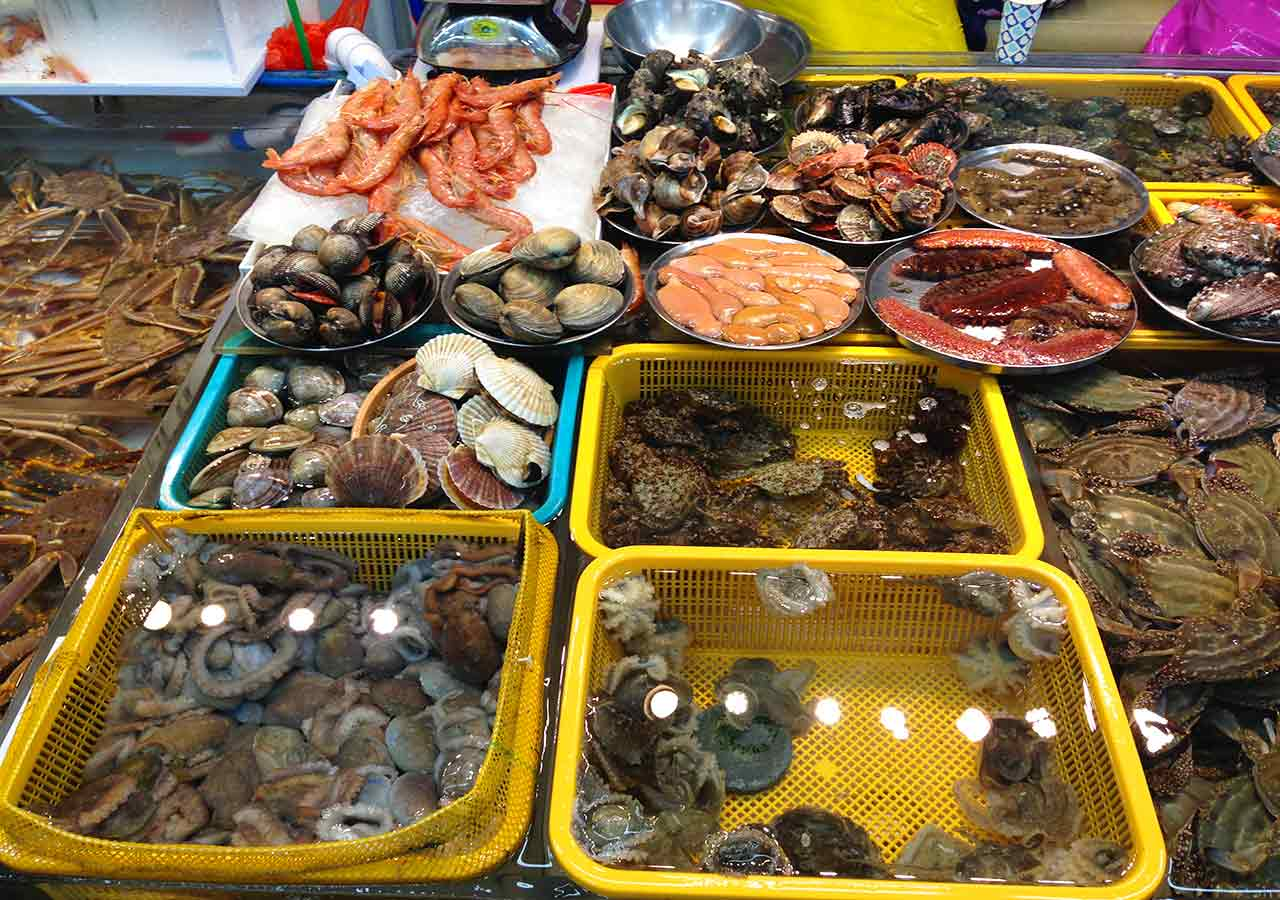 釜山観光 チャガルチ市場 建物内の露店の魚たち