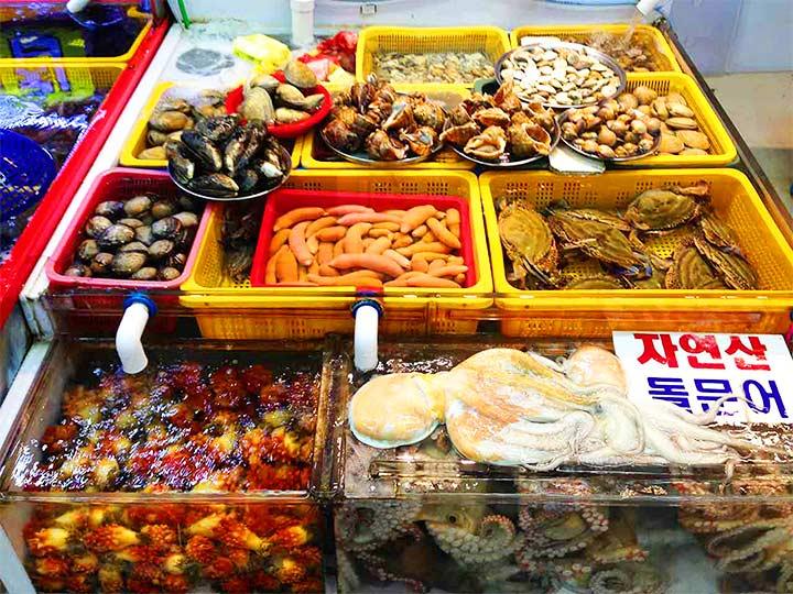 「釜山・チャガルチ市場を満喫!韓国最大級の海産市場をレポートします!」 トップ画像