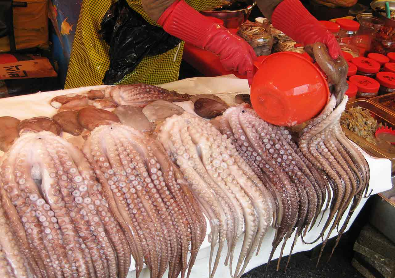 釜山観光 チャガルチ市場 野外の水産市場 タコ