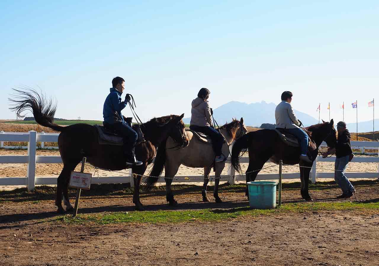熊本県阿蘇 エル・パティオ牧場 乗馬体験