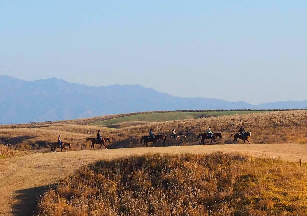 熊本県阿蘇 エル・パティオ牧場の客室からの眺め