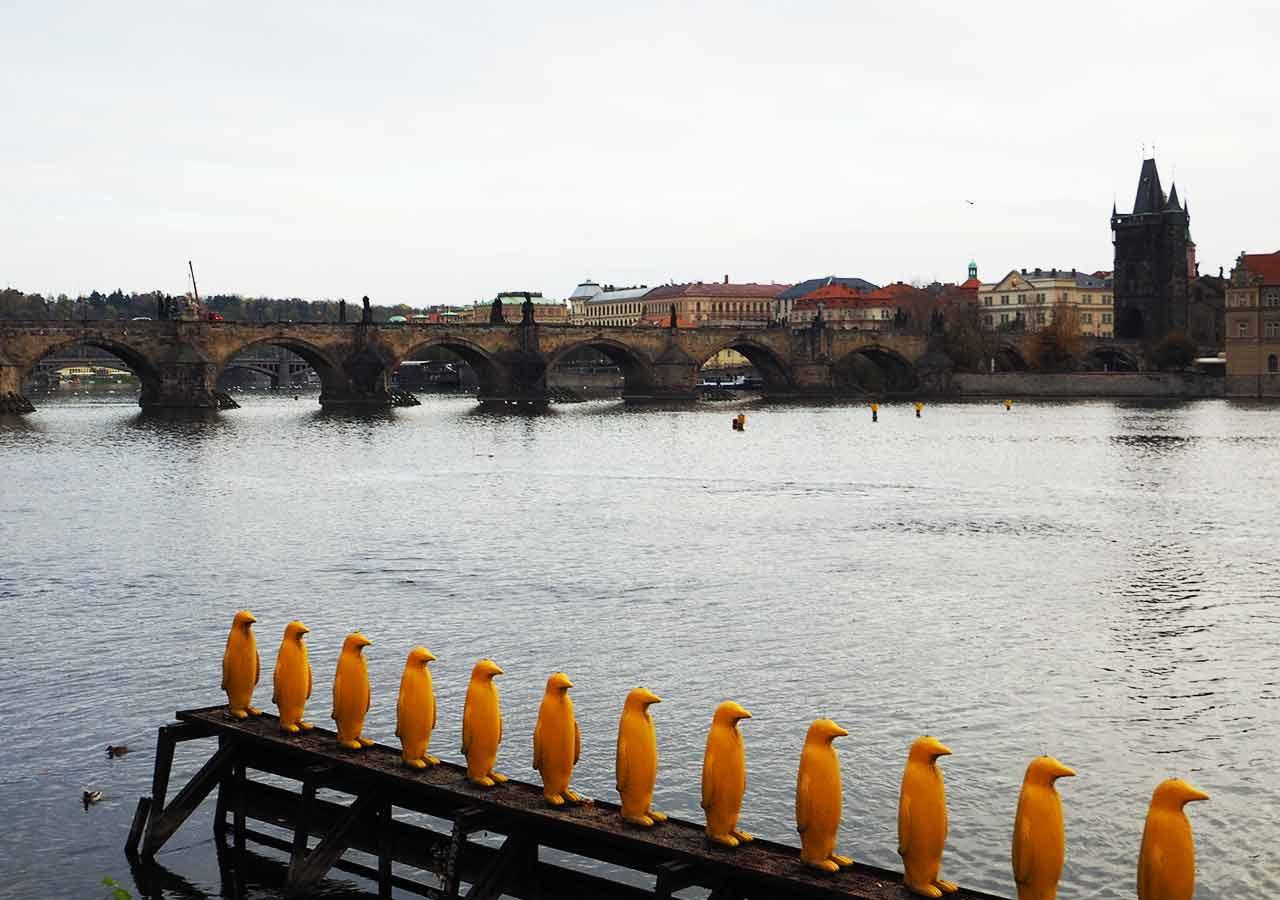 プラハ観光 カレル橋(Charles Bridge) カンパ公園からの写真