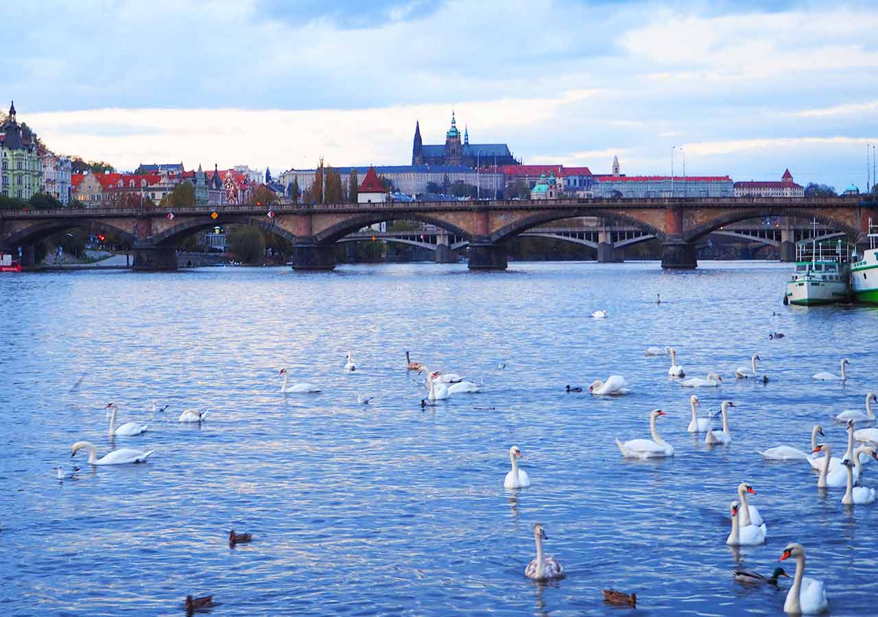 プラハ観光 ヴルタヴァ川とプラハ城