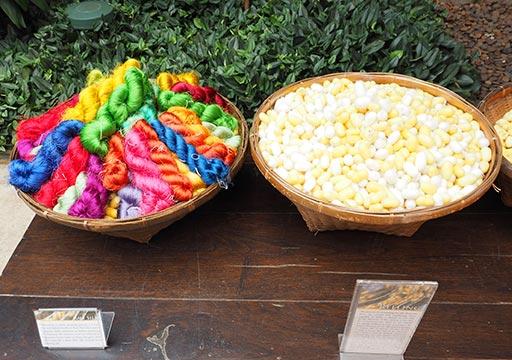 バンコク観光 ジムトンプソンの家(Jim Thompson House) 庭園 生糸と蚕