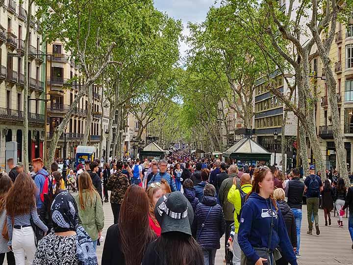 「バルセロナ・ランブラス通り観光ガイド!おすすめ観光地、グルメなど徹底解説」 トップ画像