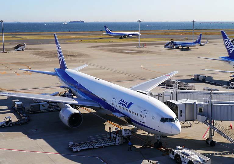 空港 ANAの飛行機