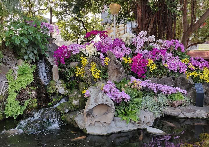 台南 赤崁楼の庭園